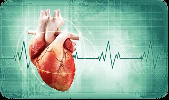 Cardiology Doctors List Sylhet